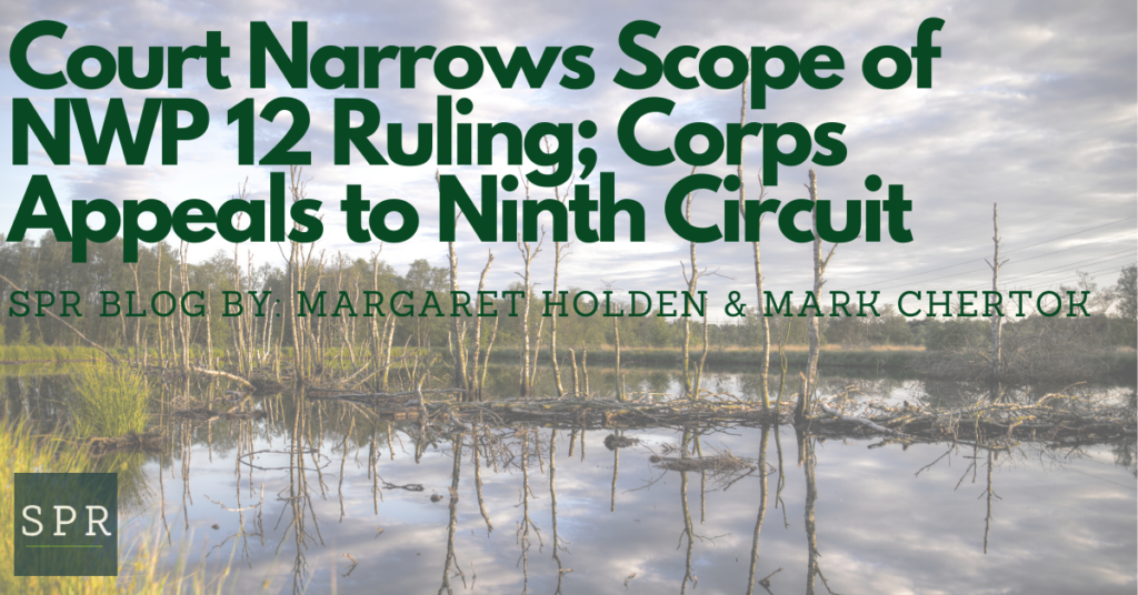 Court Narrows Scope of NWP 12 Ruling