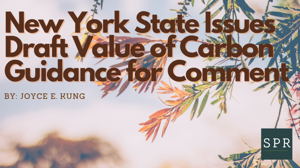New York State Issues Draft Value of Carbon Guidance for Comment